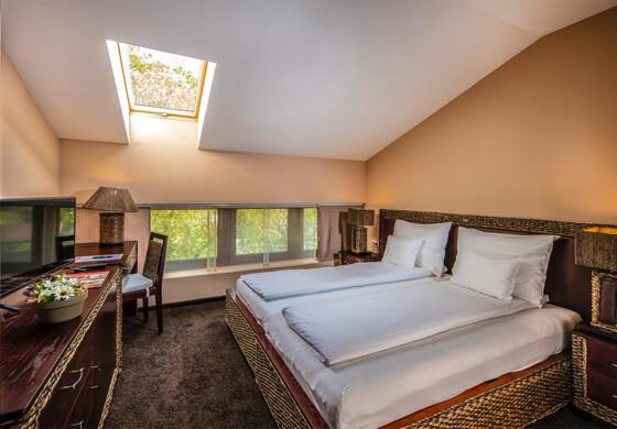 Standard kétágyas szoba - Erdőspuszta Club Hotel