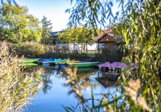 Őszi relax napok - Erdőspuszta Club Hotel